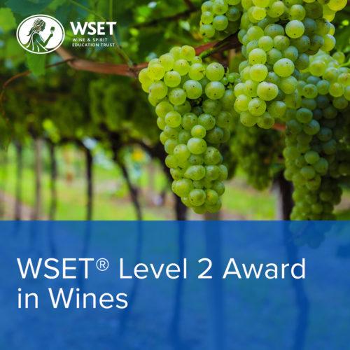 międzynarodowe kursy winiarskie