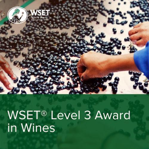 międzynarodowy kurs winiarski